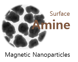 Silica Amine Magnetic Nanoparticles